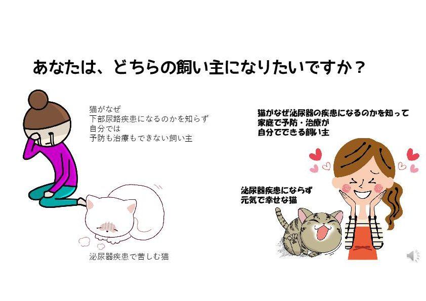 猫のストルバイト結石の食事療法ができる飼い主できない飼い主