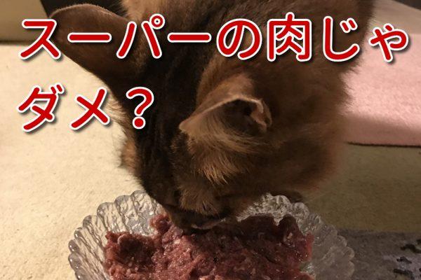 猫に与える生肉を選ぶ3つの基準