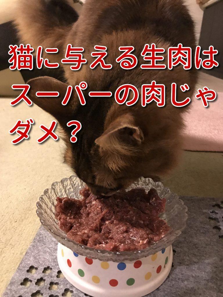 猫の手作りごはんで与える生肉を選ぶ3つの基準