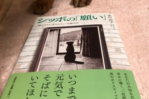 獣医師本村伸子先生の新刊「シッポの願い」~聞こえていますか?犬猫の声 が購入できる場所一覧